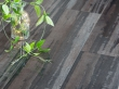 Ламинат Praktik Royal Lack 8мм 81158 Виноградный глянец